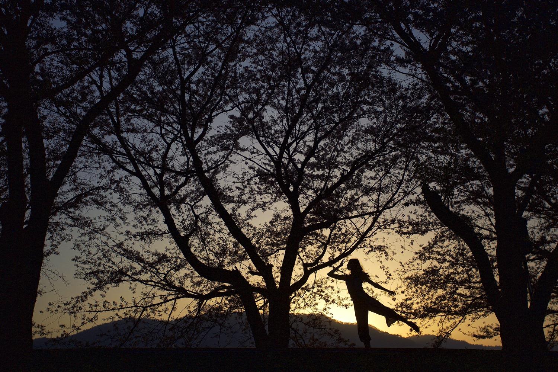 silhueta de mulher dançando fotografando na luz