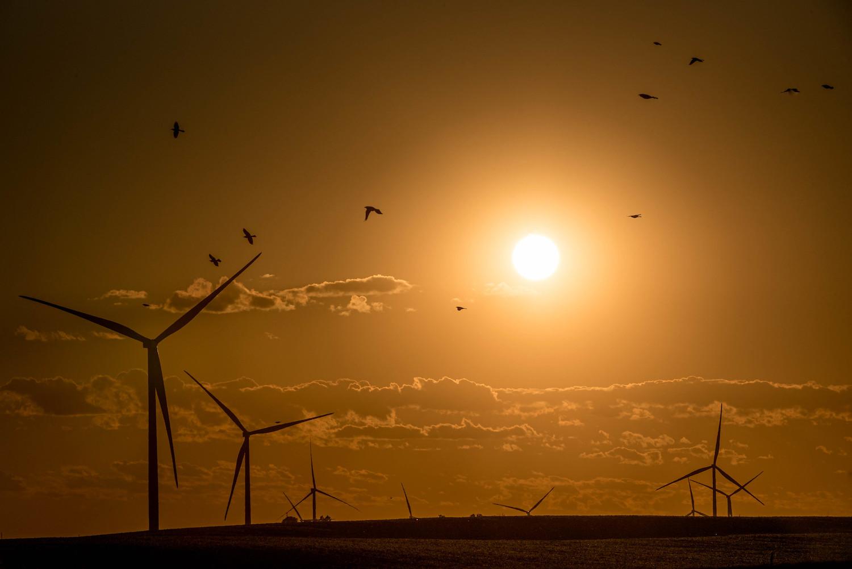 Turbinas eólicas retroiluminadas ao pôr do sol