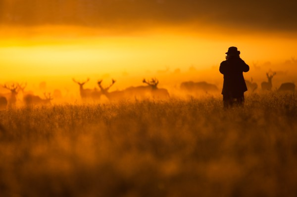 dPS Roundup: The Best Photos of October