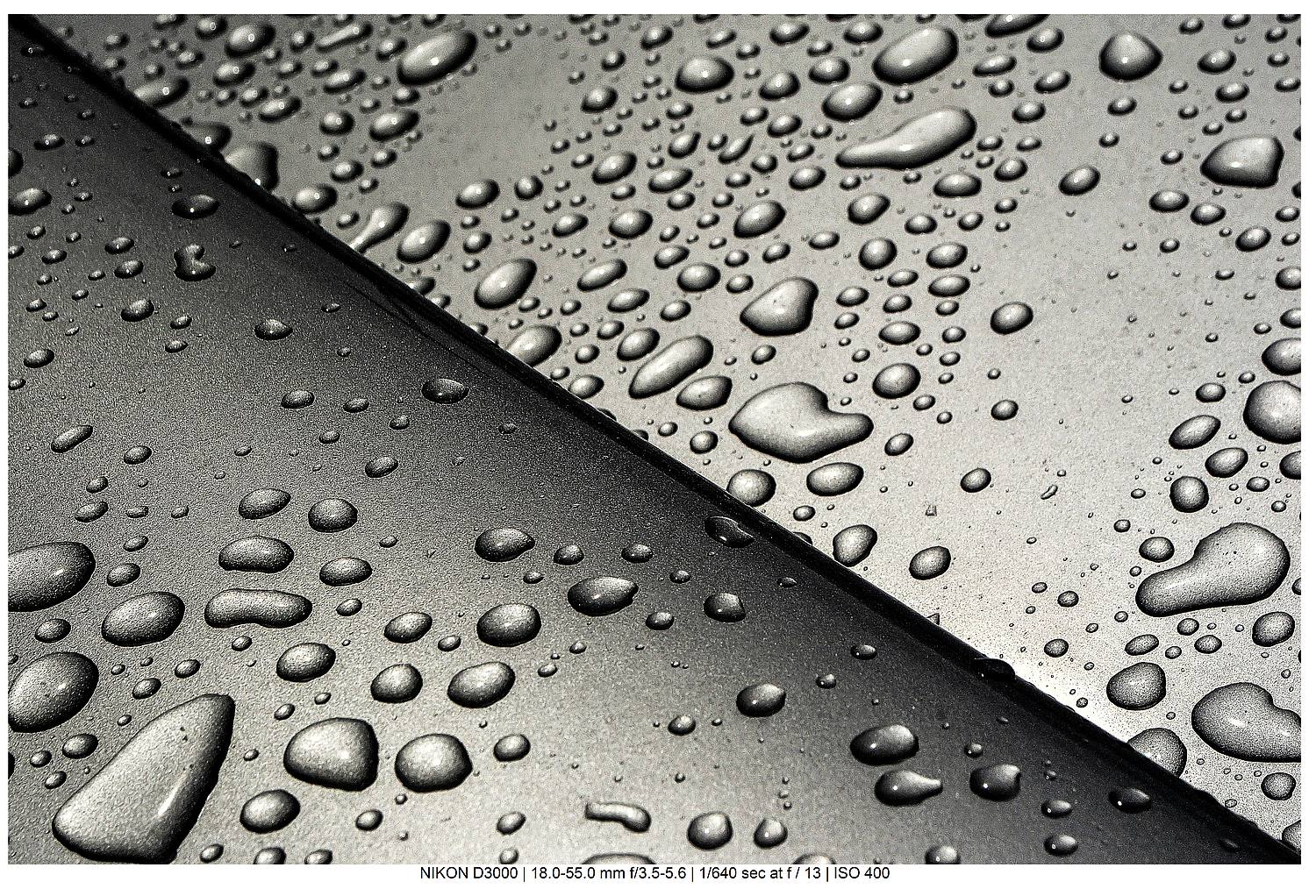 droplets in black and white