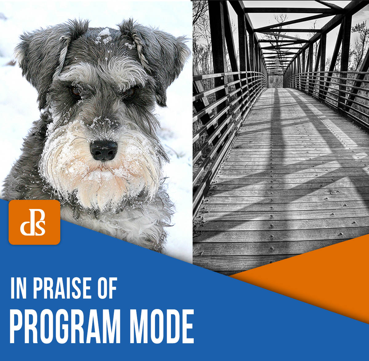 In Praise of Program Mode: Why Program Mode is Great for Beginners