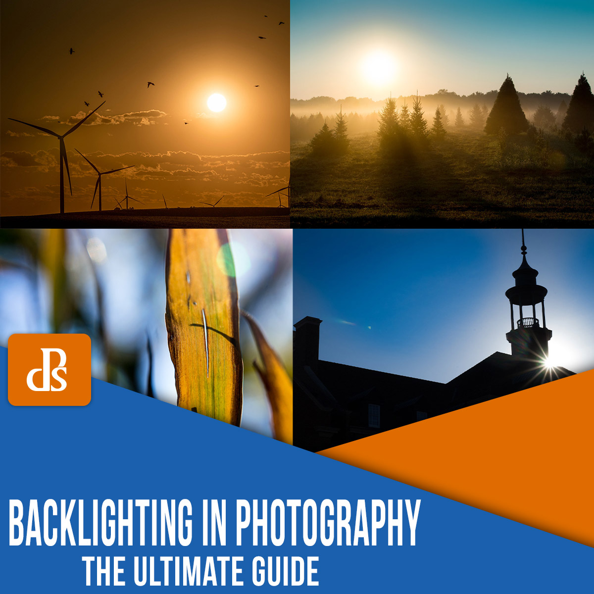 backlighting in photography the ultimate guide
