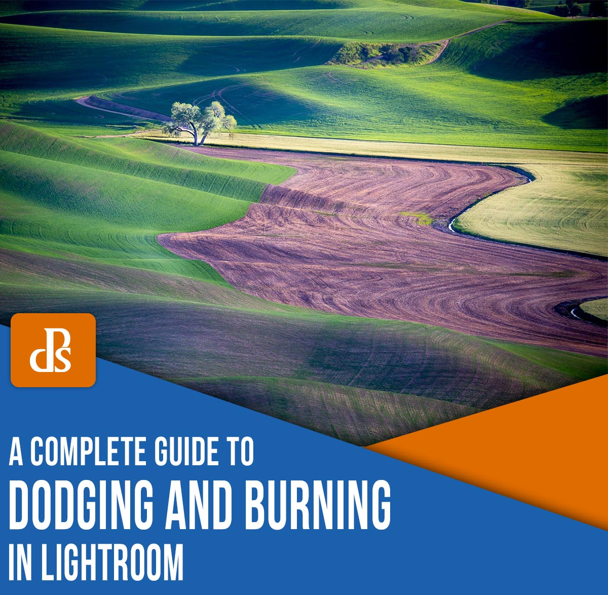dodging and burning in Lightroom a comprehensive guide