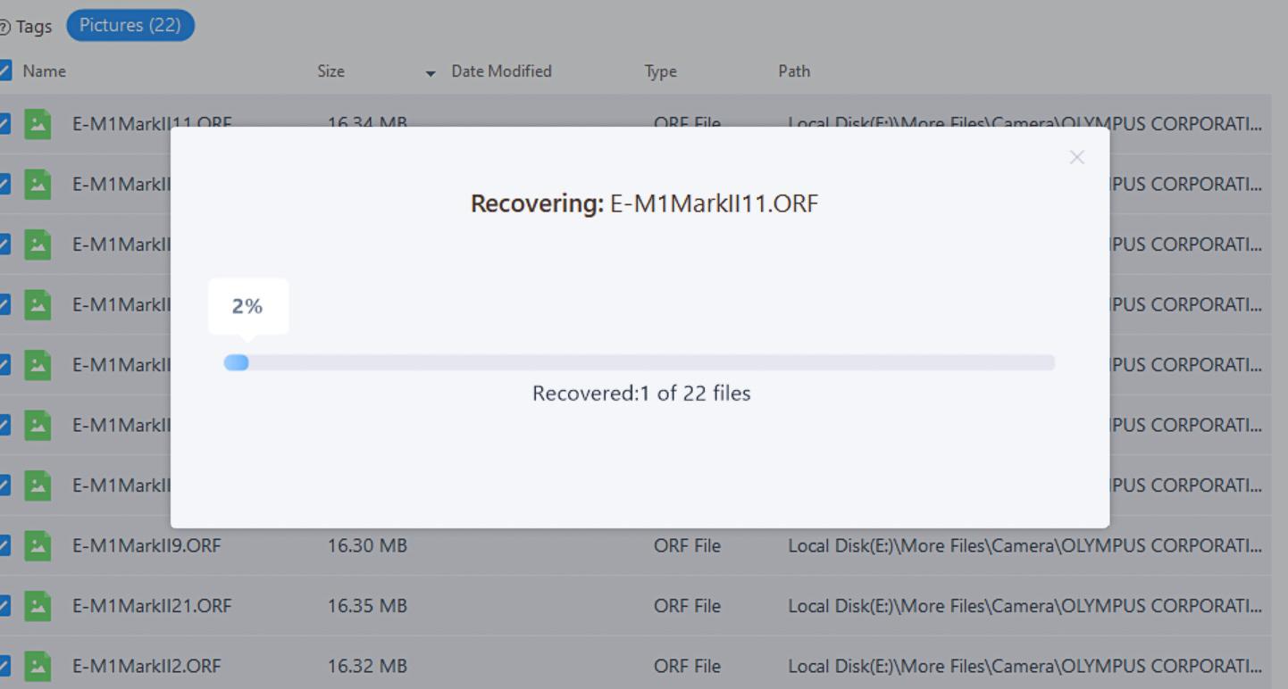 EaseUS data recovery review progress bar