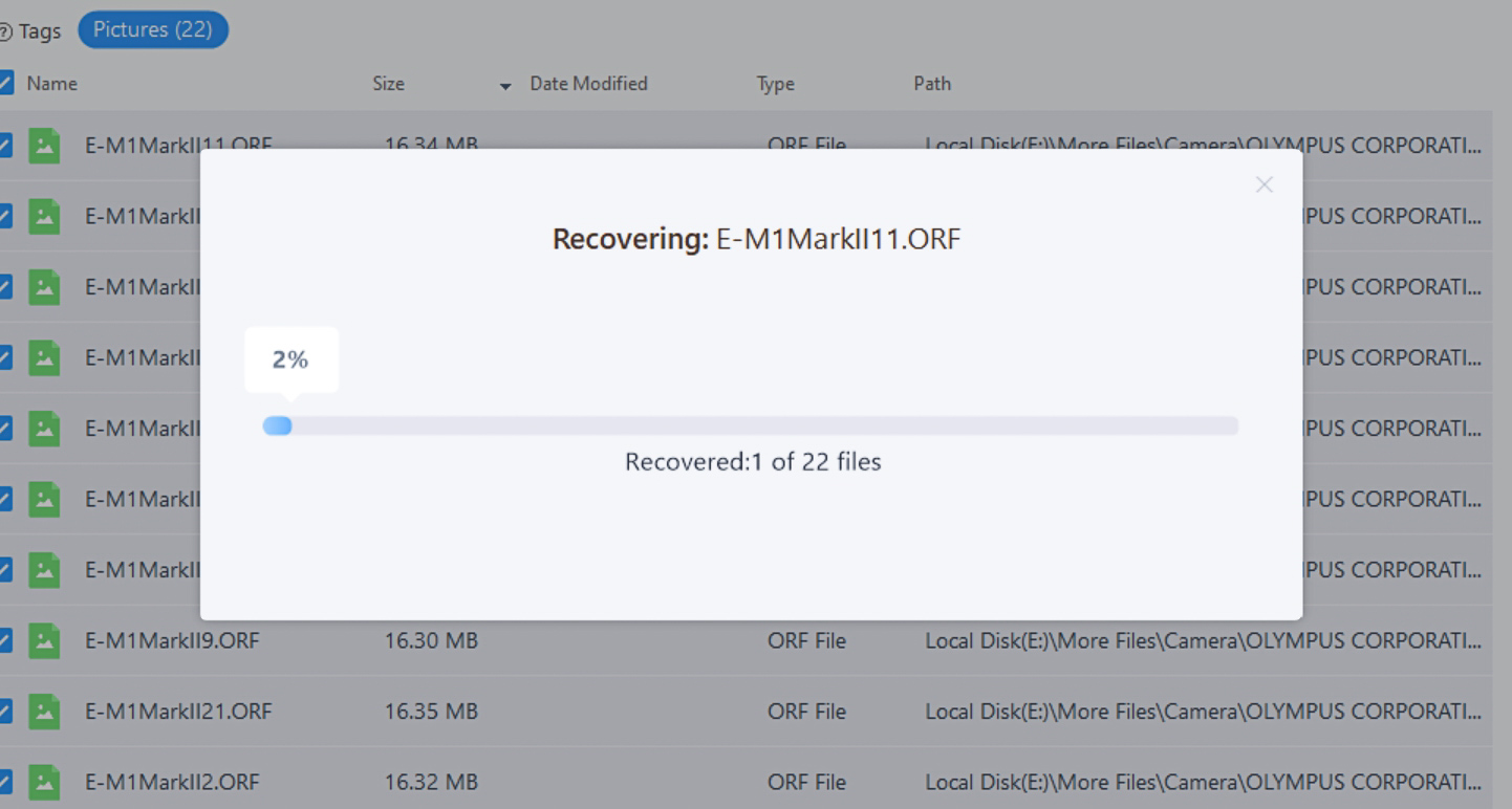 EaseUS data recovery review progress bar