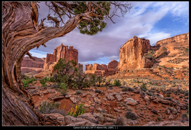 Arches National Park colorful landscape photography