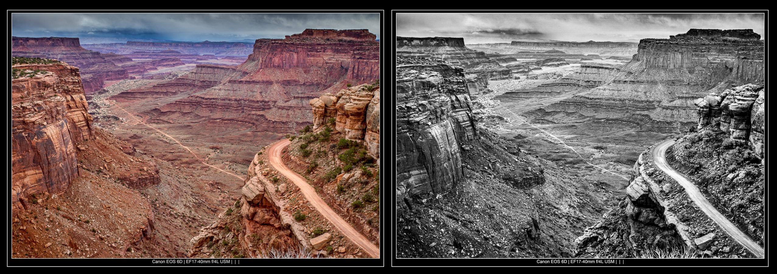 black and white versus color comparison