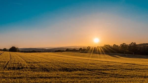 Desafio fotográfico semanal: nascer do sol
