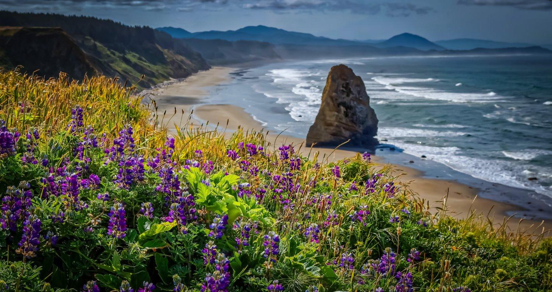 Dicas para fotografar paisagens na praia
