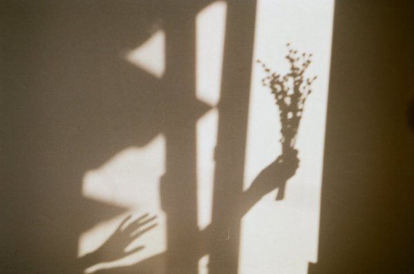 25 Shadow Pictures to Inspire You
