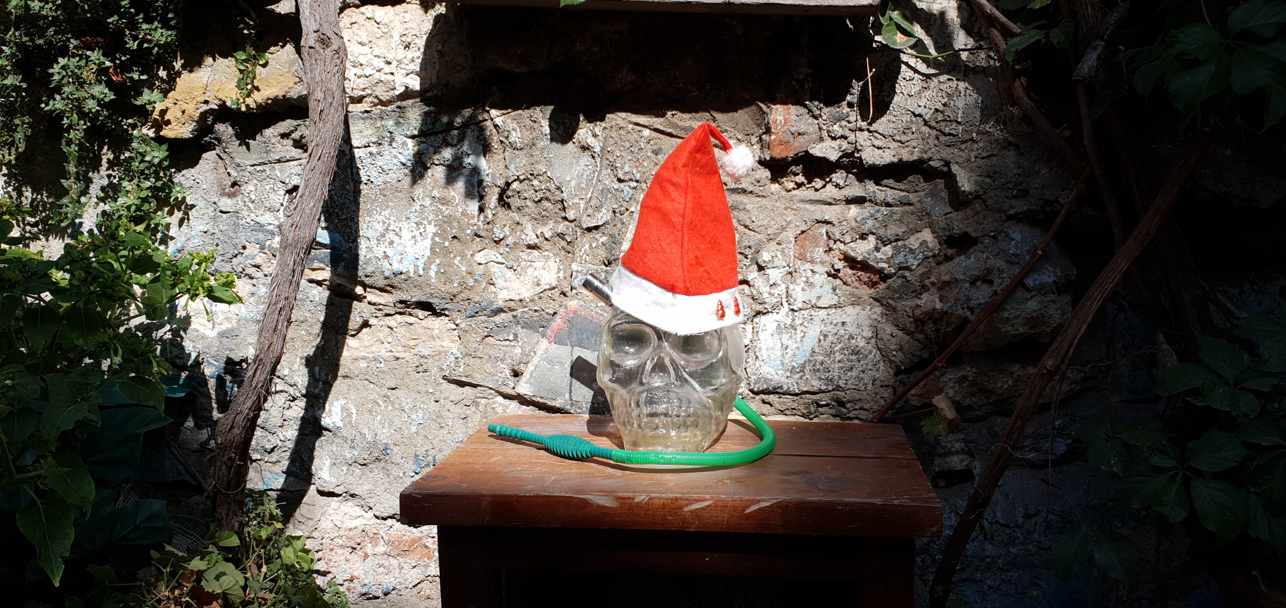 skull with a red hat