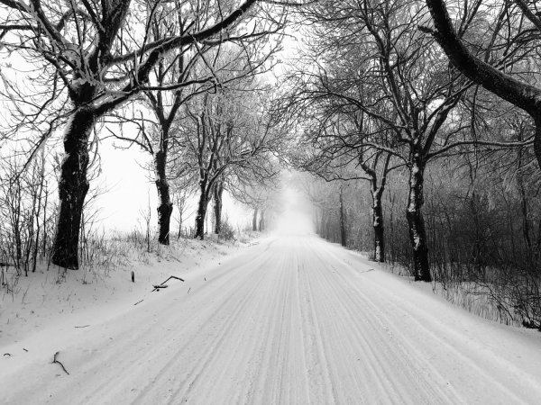 black and white landscape photography