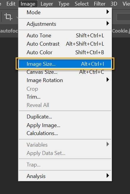adjusting the image size