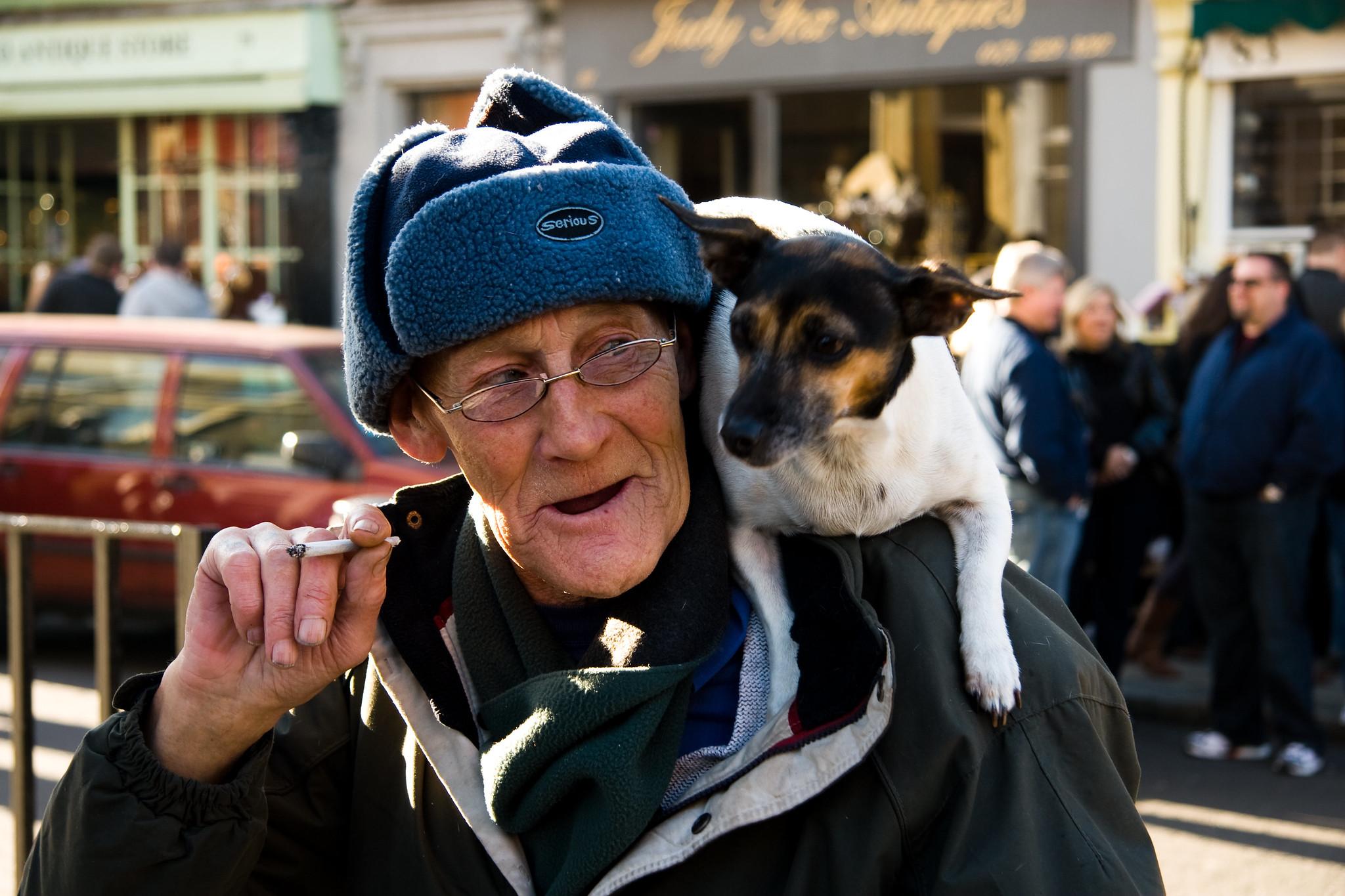 Betsy a cachorra