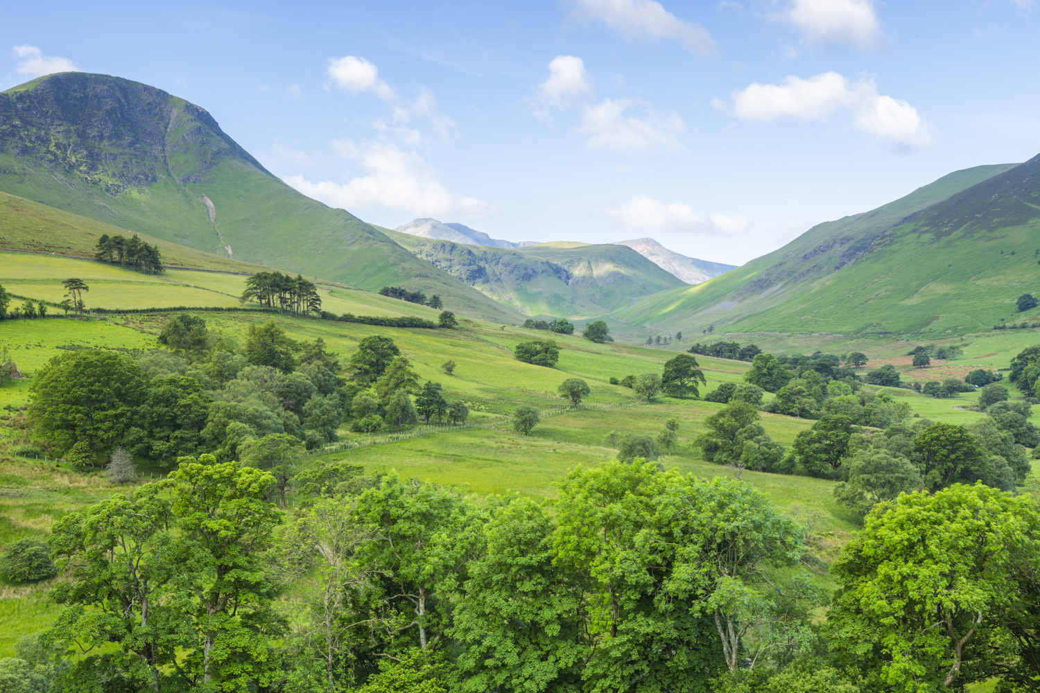 vibrant green trees and hills summer landscape photography