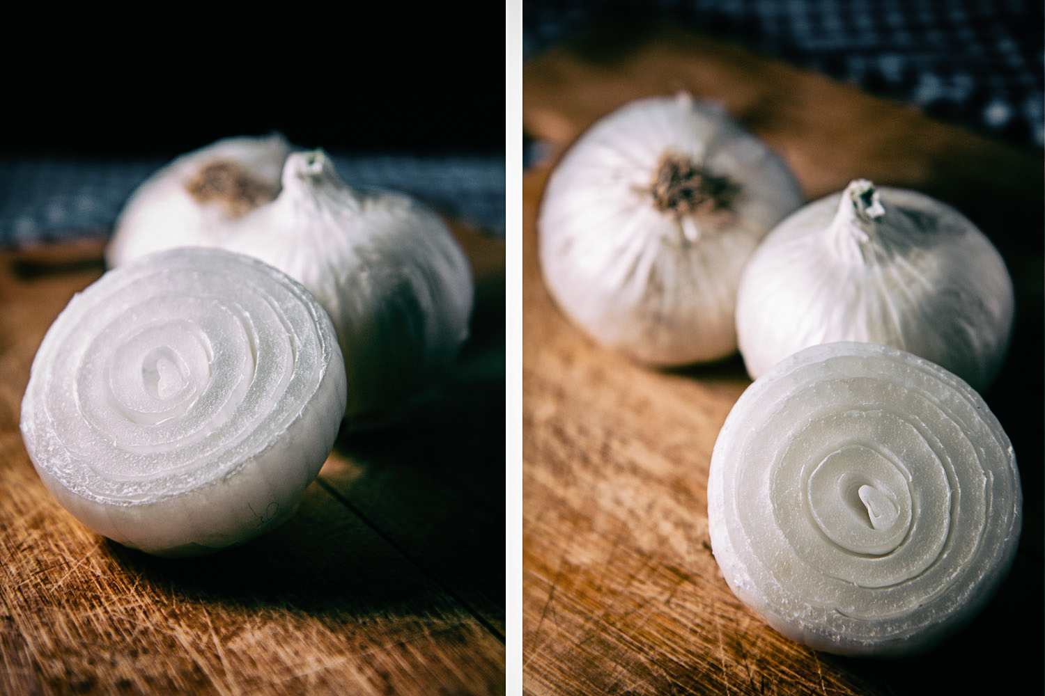 onions in different perspectives