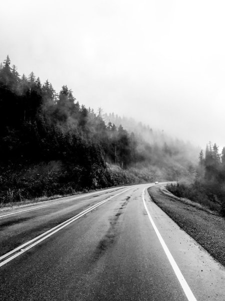 road stretching off into fog