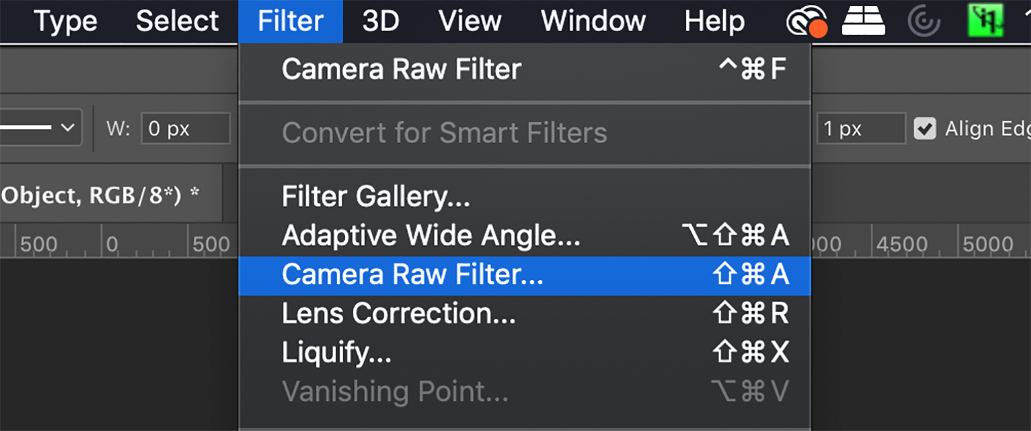 selecting the Camera Raw filter from the menu