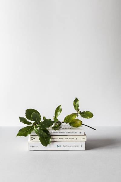 dPS Weekly Photography Challenge : Books