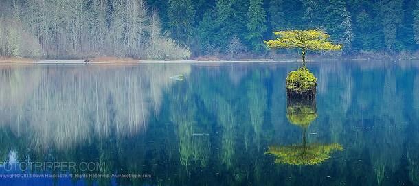 Image: Sony A7R Example shot from one exposure 'Tenacity' By Gavin Hardcastle