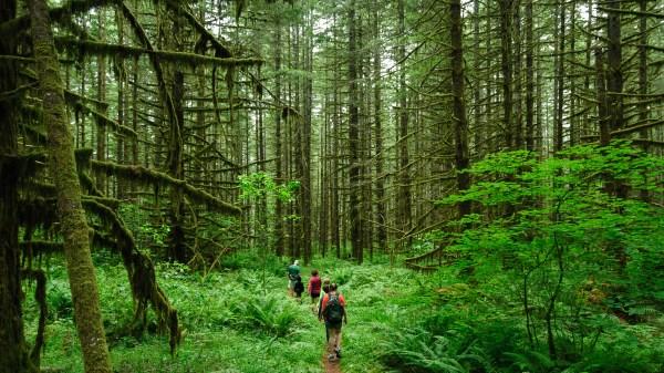 Weekly Photography Challenge – Hiking