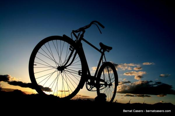 22 Picturesque Images of Bicycles