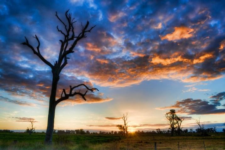 Indigo Skies Photography