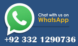 Digital Technologist- whatsapp-contact