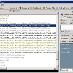 ArcGIS Server Cache testen mit Fiddler2 und IE8