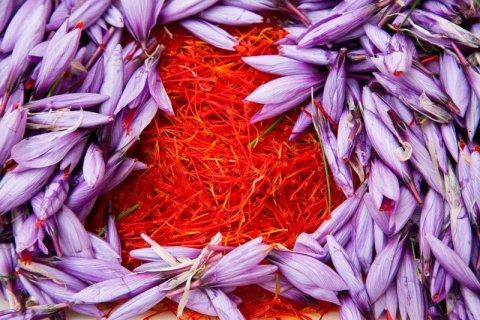5 alimentos que comían los griegos y que aún se consumen en Grecia para vivir mejor