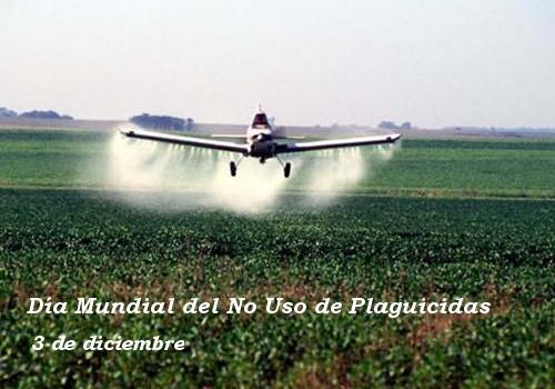 Resultado de imagen para dian internacional contra plaguicidas