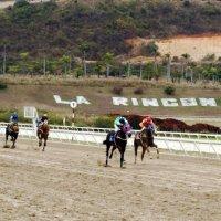 Resultados en el Hipódromo La Rinconada este 08 de noviembre