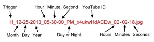 programmed_videos