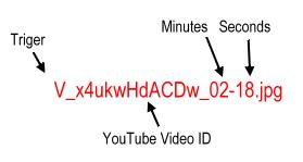 video_ads_random