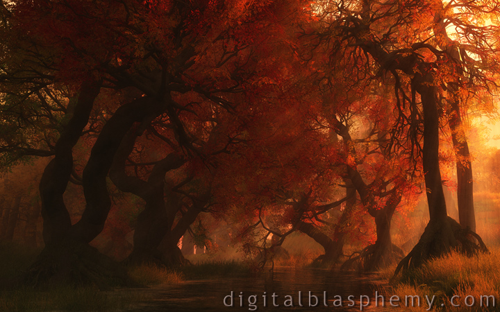 Canopy Creek (Autumn) by Digital Blasphemy