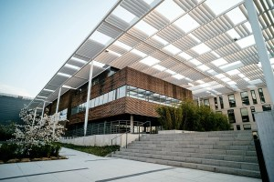 Digital Bravado architect-202-1