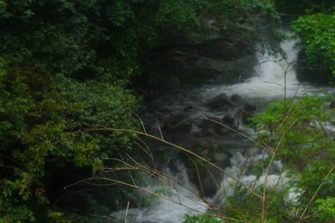Web-River-1-2