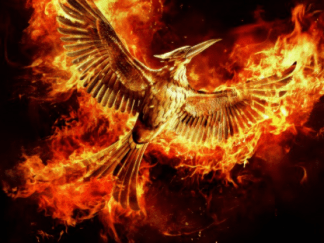HUNGER GAMES 4 (THE) MOCKINGJAY PART 2 HD iTunes DIGITAL COPY MOVIE CODE (DIRECT IN TO ITUNES) CANADA
