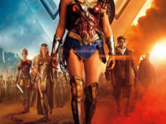 WONDER WOMAN HD GOOGLE PLAY DIGITAL COPY MOVIE CODE (DIRECT IN TO GOOGLE PLAY) CANADA