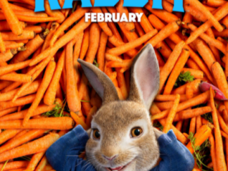 PETER RABBIT 1 HD GOOGLE PLAY DIGITAL COPY MOVIE CODE (DIRECT IN TO GOOGLE PLAY) CANADA