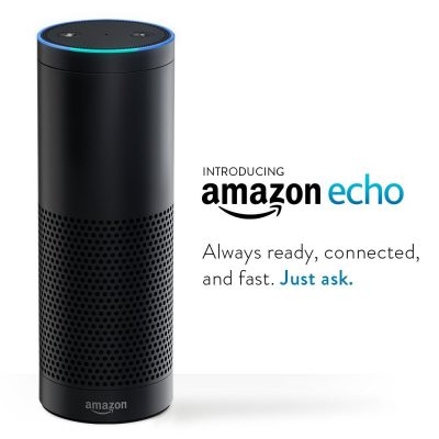 amazon echo home assistant
