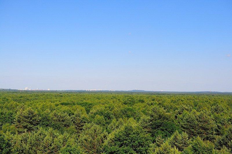 view over doeberitz with berlin germany horizon