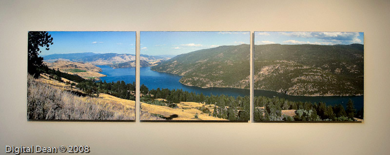 Lone Pine | Float Mounted Triptych