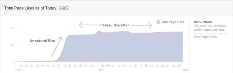 Unnatural Rise Plateau Thereafter Facebook Page Tricks Like Digital Defynd