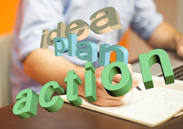 Niche idea plan action