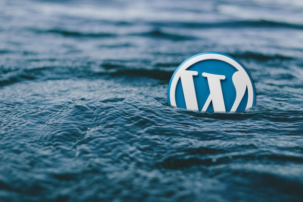 Wordpress themes Reji Stephen