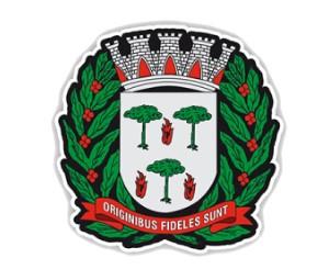 Prefeitura de Espírito Santo do Pinhal | E-atos
