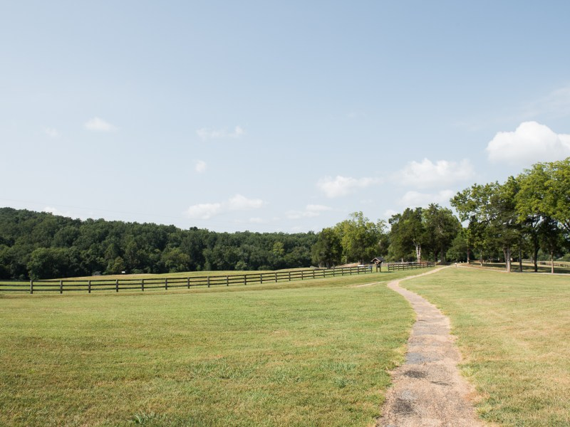 Monticello to Montpelier: A Walking Stick's Journey from One Founding Father to Another