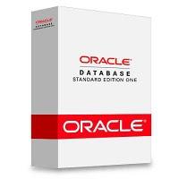Oracle veritabanı türkçe e-kitap
