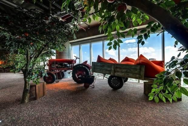 Doğa temalı Google ofis resimleri